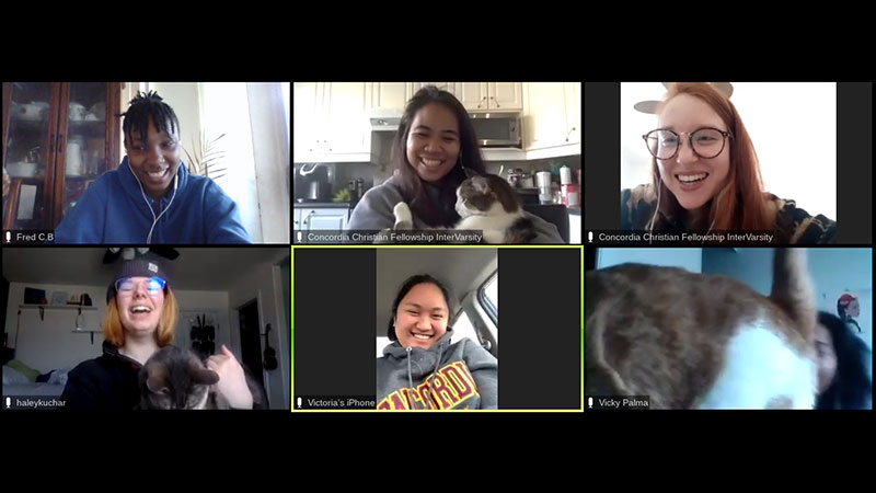 A virtual meeting between six people with three of them showing their pets
