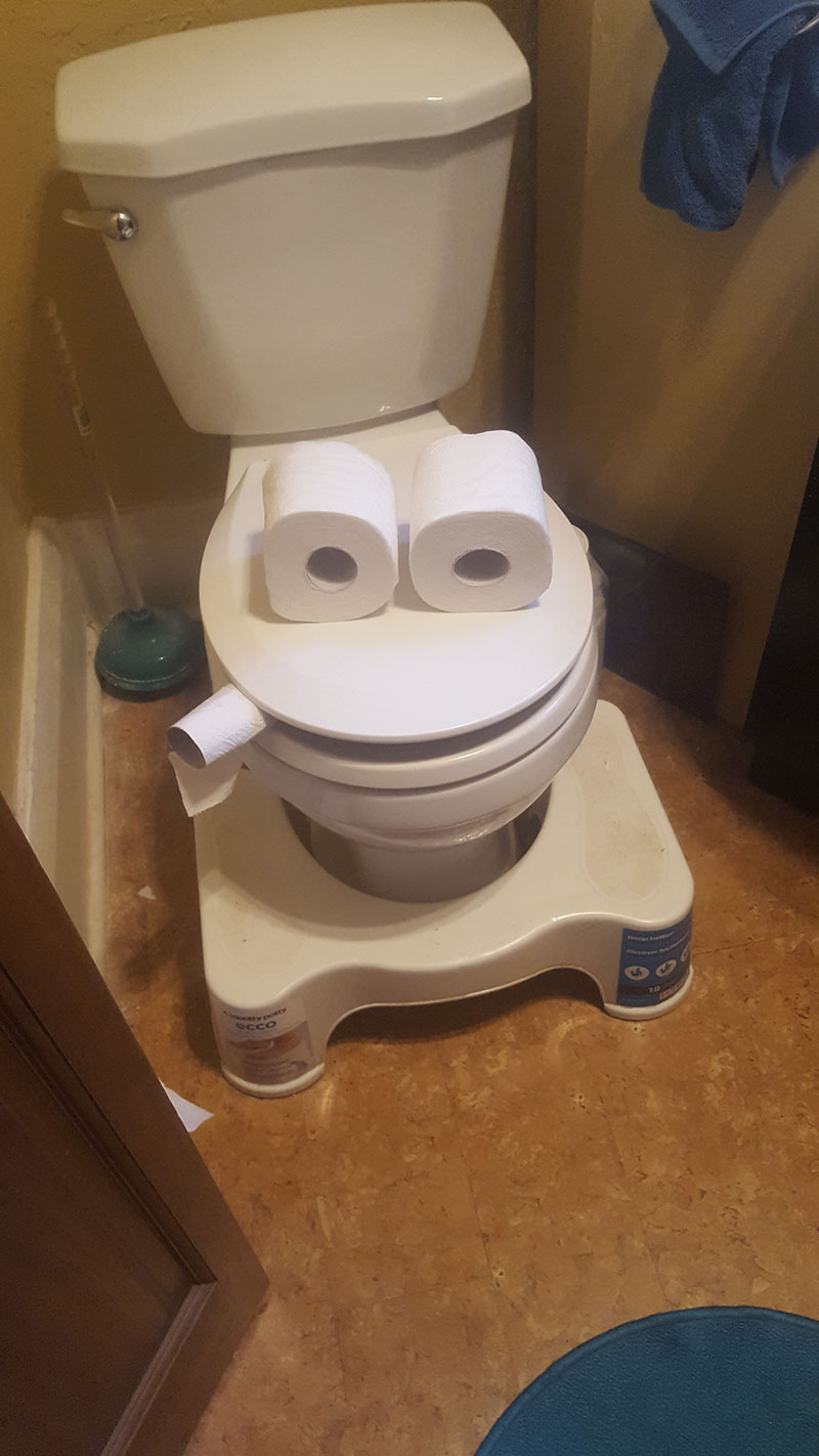 A photo of two toilet paper rolls on the toilet lid to depict a set of eyes and a smaller toilet paper roll stuck between the lid and the toilet to depict a cigarette
