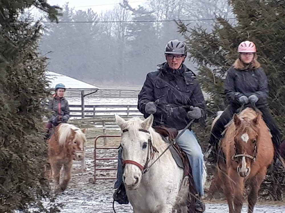 Undergraduate students at Western University horseback riding