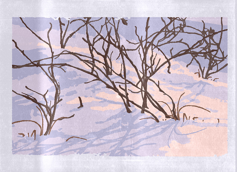 A linocut print of brown bushes without leaves with deep snow covering their bases and much of the smaller bushes. The snow is shaded in pale pink and purple. The branches cast dark purple shadows onto the snow.